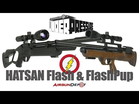 Hatsan Flash and Flashpup: Accurate, Affordable, and Powerful PCPs!