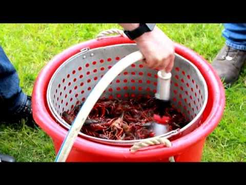 PC 2013: Washing Crawfish (KP)