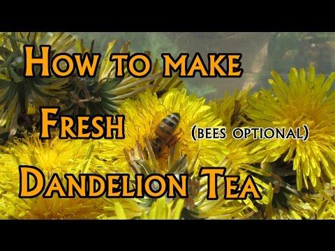 How to: Make Dandelion Tea (Soft Spoken)