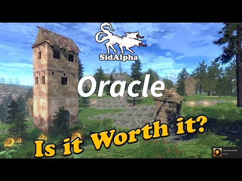 Is it worth it? Oracle