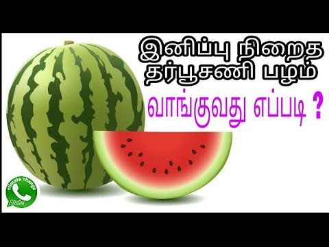 31. How to pick a good watermelon, tips & tricks, perfect & sweetly watermelon, ripe & organic fruit