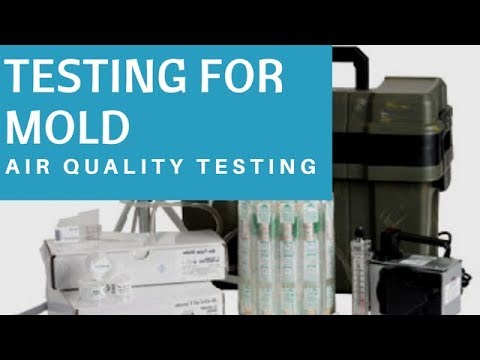 How to Do an Air Test For Mold : Air Qaulity Testing For Molds
