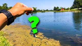 I Paid $20 For The Best Pond Fishing Lure Ever!!