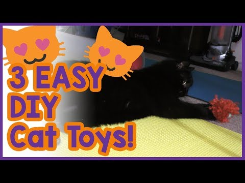 3 Easy DIY Toys for Cats! Simple Homemade Toy Ideas to keep Your Cat Entertained!