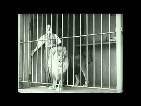 Xxx Mp4 Charlie Chaplin The Lion 39 S Cage Mp4 3gp Sex