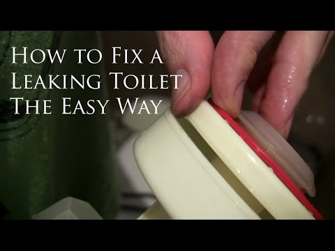 How to Fix a Leaking Toilet - The Easy Way