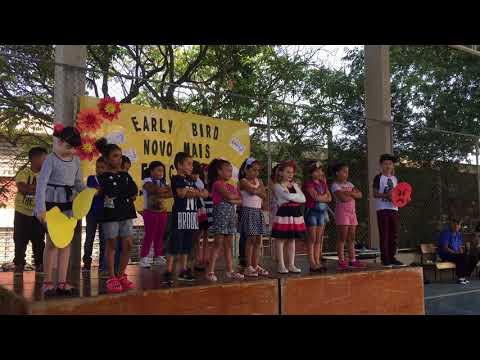 Projeto Early Bird- Finalização de ano// E.E. Prof. Benedita de Campos Marcolongo