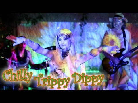 ChillyTrippyDippy live - an amazing psychedelic multimedia show