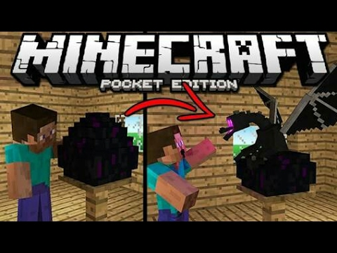 ✔How To Hatch Ender Dragon Egg In Minecraft PE!?