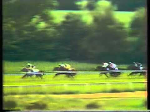 Horse Racing 1985 Northumberland Plate Newcastle  Trade Line