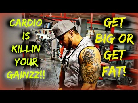 How to do Cardio Without Losing Muscle: Cardio is Killing Your Gains