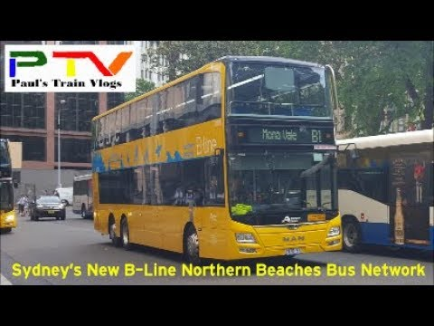 Paul's Train Vlogs Special: Sydney's New B-Line Bus Network