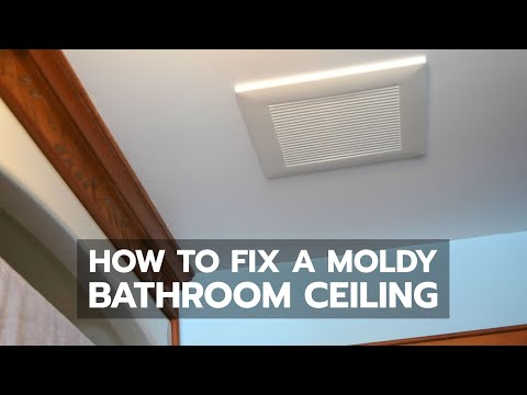 BATHROOM CEILING MOLD: How to Get Rid of It