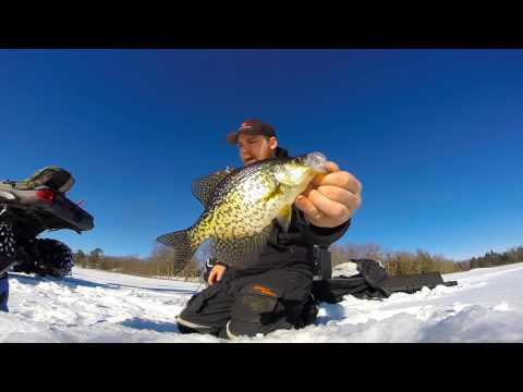 Insane Crappie Bite!  Ice Fishing Shallow VS. Deep   Crappie fishing tips