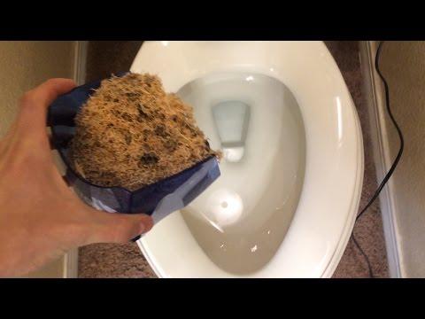 Flushing Pencil Shavings Down The Toilet