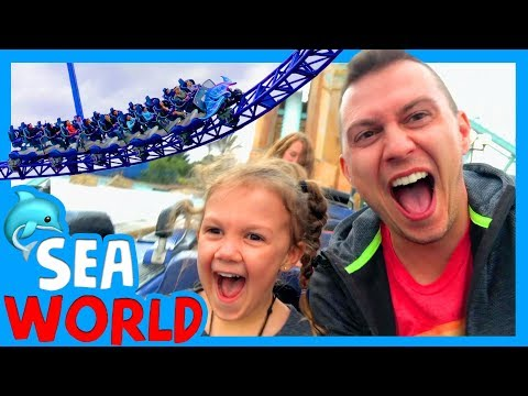 KIDS RIDE SEA WORLD ROLLER COASTER 🐬 Best Sea World Show For Kids