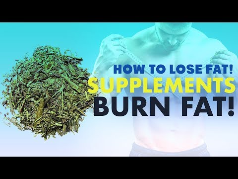 BEST Supplements For Fat Loss - How To Lose Fat 101 (FOR REAL) #13