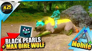 Otter Taming And Fishing Black Pearls Using Our Frog Feet Solo Ark Mobile S1 E25 Black pearls (scorched earth) (self.ark). frog feet solo ark mobile s1 e25