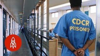 5 Incredible Prison Rehabilitation Programs