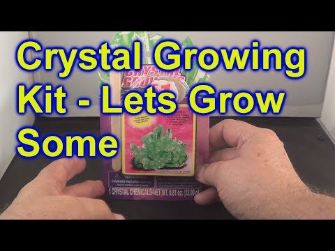 Crystal Growing Kit By CreativeKids From Dollar Tree Watch Them Grow