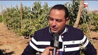 كل يوم - أهالي قرية بلانة بأسوان يستغيثون من اختلاط مياه الشرب والري بالصرف