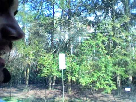 Live from US - New York, from Orangeburg by the bus