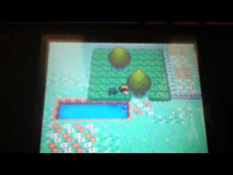 Pokemon heartgold catching chansey in safari zone