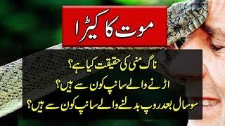 Snake Documentary In Urdu - Mysterious Animals - Purisrar Dunya