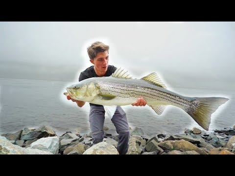 Most INSANE GIANT Striped Bass TOPWATER Fishing  -- (Striper Mayhem D.1)