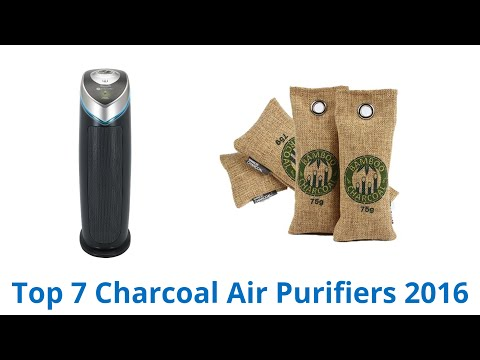 7 Best Charcoal Air Purifiers 2016