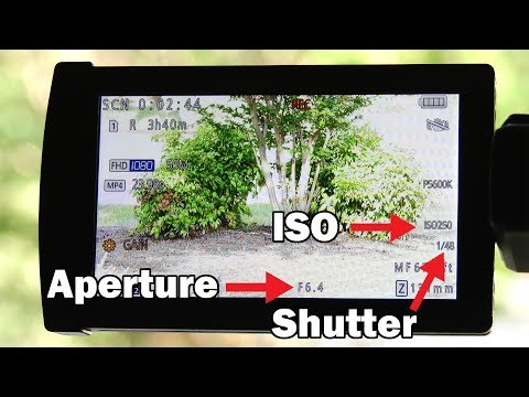 You Asked For It! Aperture, ISO, and Shutter Speed Explained