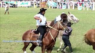 Jineteadas  Basto Oriental Y Bastos Con Encimera En Fiesta De La Patria Grande