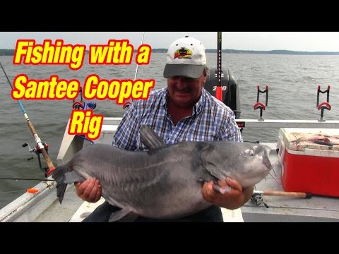 Fishing with a Santee Cooper Rig to Catch Big Catfish