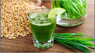 This Happens To Your Body If You Drink Wheat Grass Daily