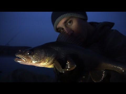 Last Second Walleye in the Most Unexpected Way. Winter Walleye Fishing.