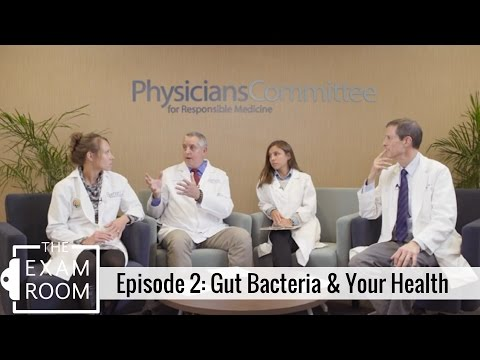Gut Bacteria and Your Health | The Exam Room