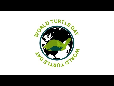 World Turtle Day 2017