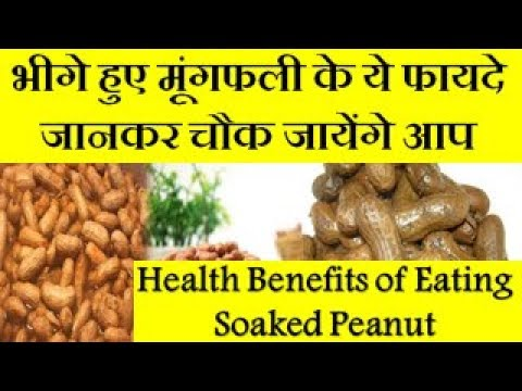 Benefits of eating Peanuts for health | Amazing Health Benefits and Uses Of Peanuts (Mungfali)