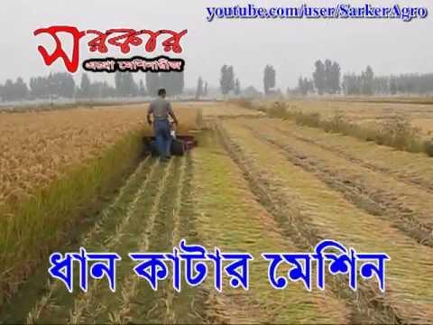 Paddy Rice Cutter Machine