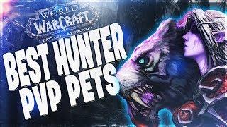 BfA Battle Pet Vendors, Sources and Secrets! Pet Battle