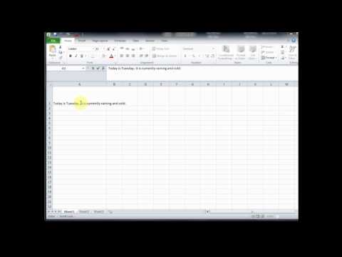 How2 go to a new line within a cell in EXCEL?