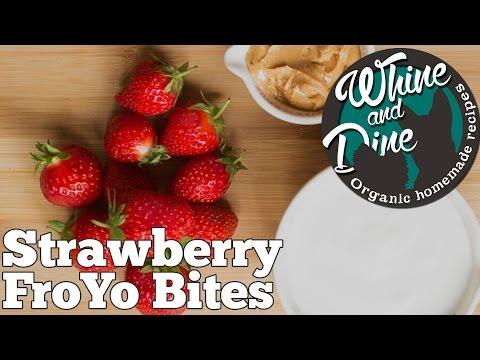 Strawberry Frozen Yoghurt Bites for Dogs | Homemade Dog Ice Cream