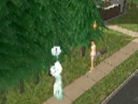 Easy instrutions on how to become a werewolf -Sims 2