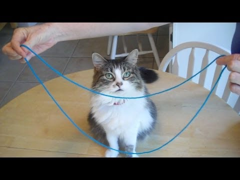 Cheshire Cat string figure (The Smile) - EASY!  LOL