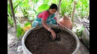 Preparing Vermicompost | केंचुवा खाद बनाने की विधि | गोबर की शक्तिशाली खाद कैसे बनाये