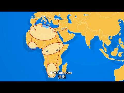 GLOBAL ENERGY INTERCONNECTION ( GEIDCO)