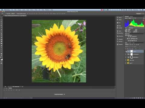 Linked Images between Illustrator CS6 and Photoshop CS6