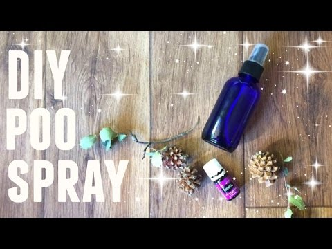 HOW TO MAKE ALL NATURAL AIR FRESHENER ● 3 INGREDIENTS ● FRUGAL DIY ● POO SPRAY