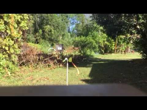 New wind meter -----
