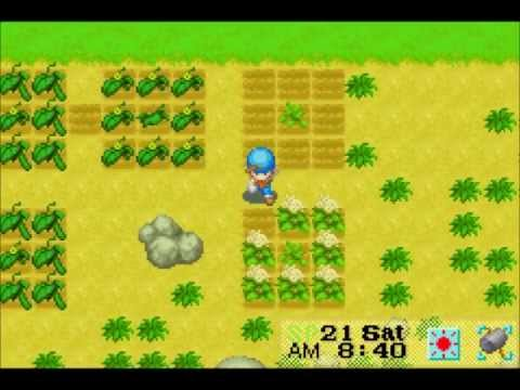 Let's Play Harvest Moon: Friends of Mineral Town 12: Potatoes